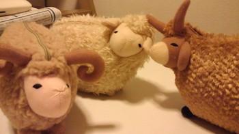 三匹の羊さん.jpg